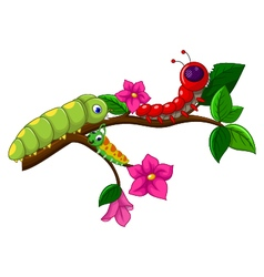 Caterpillar cartoon collection vector