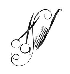 a symbol for a hairdresser and beauty salon vector image vector image