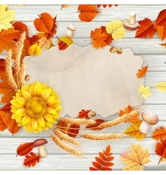 Colorful leaves background EPS 10 vector image vector image