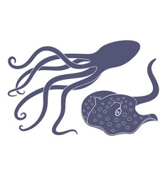 Mollusca vector image