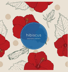 set of chinese hibiscus hand draw seamless pattern vector image
