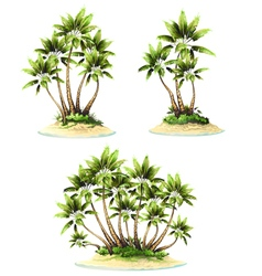 Palm on island vector