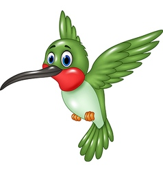 Cartoon funny hummingbird flying isolated vector