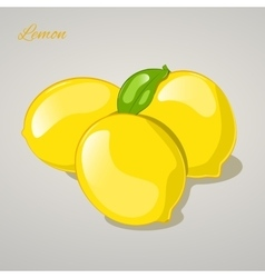 Cartoon sweet lemon on grey background vector