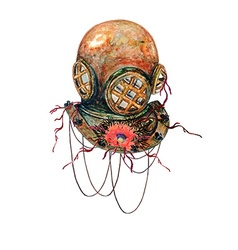 Diving Helmet and Poppy vector image