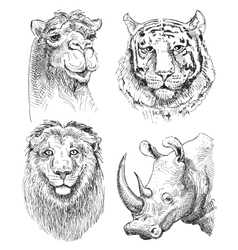 Set of safari head animals black and white sketch vector