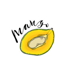 The cut fruit of mango on a white background with vector