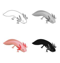 Mexican axolotl icon in cartoon style isolated on vector