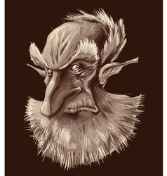 Ancient elf portrait vector