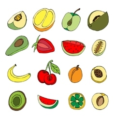 many fruits vector image vector image