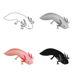 Mexican axolotl icon in cartoon style isolated on vector