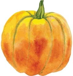 Orange pumpkin with a green tail vector