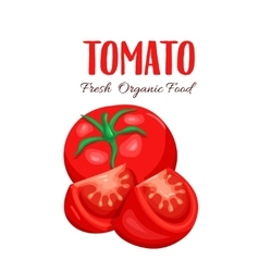 Tomato sliced vector