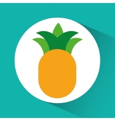 Pineaple inside circle design vector