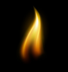 Single candle flame element vector