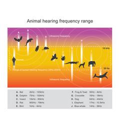 Hearing range describes the range of frequencies vector