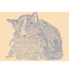 Cat with ball of yarn low vector