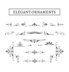 Elegant ornaments vector