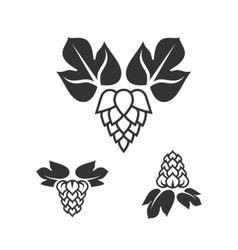 Set of hop icons vector