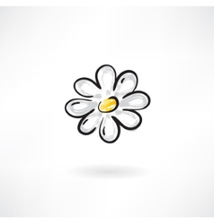 camomile flower vector image vector image