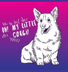 Cute with welsh corgi home vector