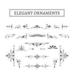 elegant ornaments vector image