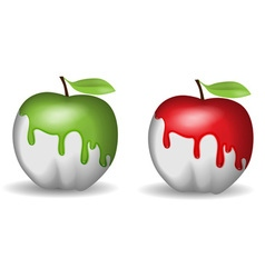Half-painted apple vector image vector image