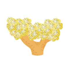 Yelow star soft coral tropical reef marine vector