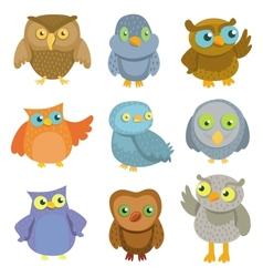 Collection of cartoon owls vector image