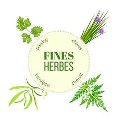 fines herbes round emblem vector image