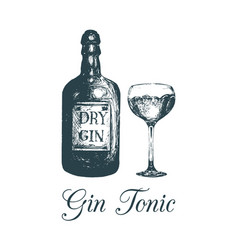 hand sketched gin bottle and glassalcoholic drink vector image vector image
