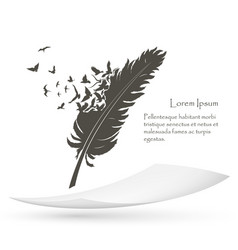 old feather with flying birds and paper vector image