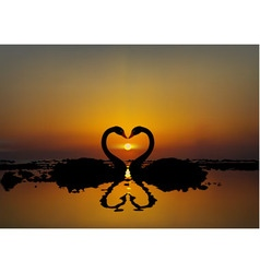Two lovers swans at sunset or sunrise vector