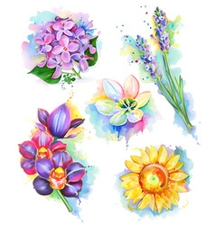 Beautiful flowers watercolor painting mesh icon vector