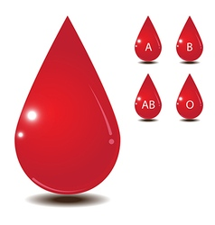 Blood drop isolate on white back ground vector