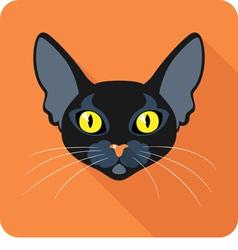 Bombay Black Cat icon flat design vector image vector image