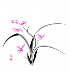 orchid blossom vector image vector image
