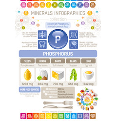 Phosphorus mineral supplement rich food icons vector