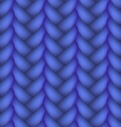 Woven Braid Seamless Pattern vector image vector image