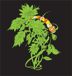 Caterpillar on a plant vector