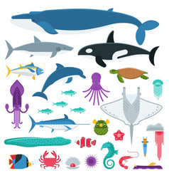 Sea life and underwater animals and fishes vector