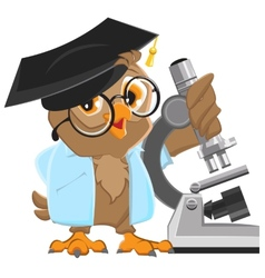 Owl professor in mortarboard holding the vector