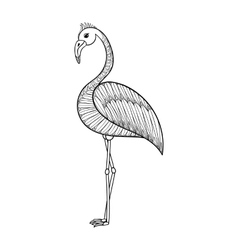 Coloring page with flamingo bird zentangle vector