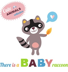 RaccoonBaby vector image