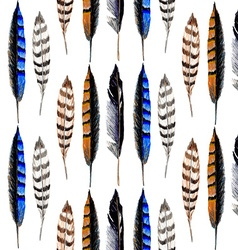 Striped feather vector image