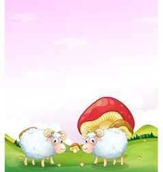 Two sheeps at the hill with mushrooms vector image
