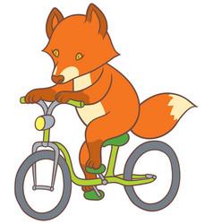 Cute cartoon fox riding a bicycle vector
