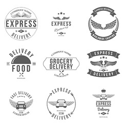 Express Delivery Label and Badges Design elements vector image