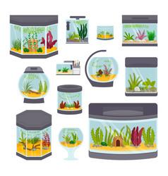 transparent aquarium interior vector image