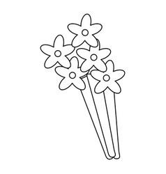 flowers bouquet decoration present vector image